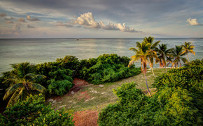 Bahia Honda State Park, Florida, sea, shore, Palms, beach, landscape