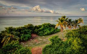 mar, costa, Florida, Palms, Bahia Honda State Park, praia, paisagem