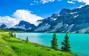 Parco nazionale Jasper, ozero.gory, alberi, paesaggio