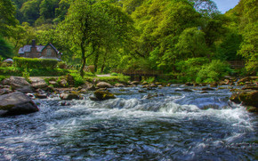 Exmoor, Devon, East River Lyn, Inglaterra, Watersmeet, Uotersmit, Devonia, rio, floresta, ?rvores, casa