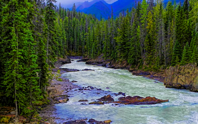 Horse River, Canadian Rockies, river, Rocks, trees, Mountains, landscape