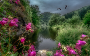 river Kamp, Austria, river, Mountains, trees, Cranes, landscape