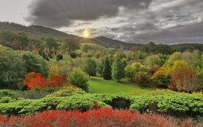 Lofty Botanic Gardens, Adelaide Hills, South Australia
