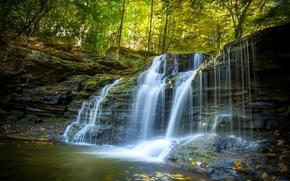 Ricketts Glen State Park, Pennsylvania, Пенсильвания, водопад, каскад, лес, осень