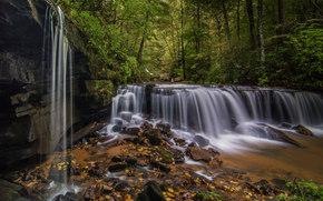 Pearson's Falls, Saluda, North Carolina, Водопад Пирсона, Салуда, Северная Каролина, водопад, каскад, лес, камни