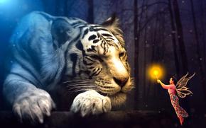 fadas, surrealismo, menina, Phantasmagoria, tigre, 3d, arte