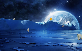 Polo nord, Orsi polari, pianeta, arte
