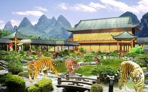 Tigers, Asians, surrealism