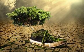 shoe, tree, surrealism, Phantasmagoria, 3d, art