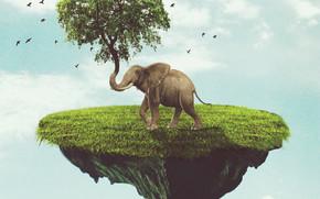 ?rvore, surrealismo, elefante, Phantasmagoria, ilha, 3d, arte