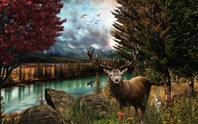река, деревья, осенькамни, олень, пейзаж
