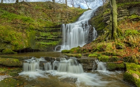 Scaleber Force, Yorkshire Dales, North Yorkshire, england, Yorkshire Dales, North Yorkshire, England, waterfall, cascade, autumn