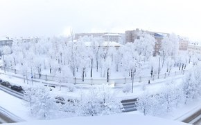 Winter Is Coming, winter, trees, drizzle, panorama
