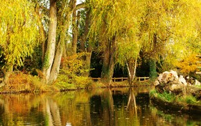 парк, пруд, осень, деревья, пейзаж
