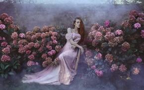 ragazza, Redhead, rossa, vestire, giardino, Fiori, Ortensie, stato d'animo