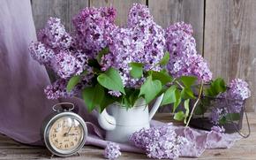 lilac, bouquet, alarm clock, watch