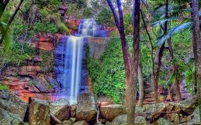 cascata, Rocce, pietre, alberi, paesaggio