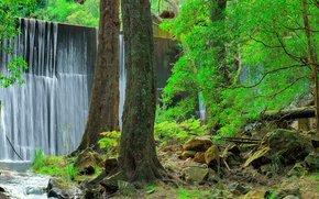 Jenolan Park in the Blue Mountains, NSW, Australia, waterfall