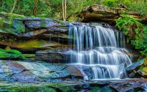 waterfall, Central Coast of New South Wales, Australia