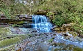 wodospad, Central Coast z Nowej Południowej Walii, Australia