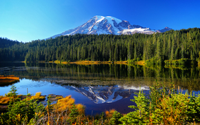 Lago, , Reflexo, lago, Mount Rainier National Park, Montanhas, ?rvores, paisagem