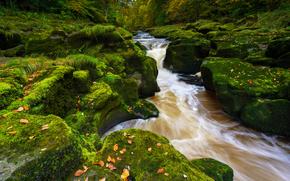 Abbey Bolton, Wharfedale, Strid Madeira, Yorkshire Dales, Rio Wharfe, North Yorkshire, Inglaterra, O rio Wharfe, Varfideyl, rio, pedras, musgo, outono