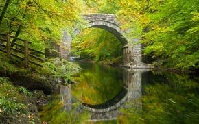 Dartmoor, Devon, Rio Dart, Inglaterra, Holne Ponte, Holn Ponte, Devonia, ponte, arco, rio, reflex?o, floresta, ?rvores, outono