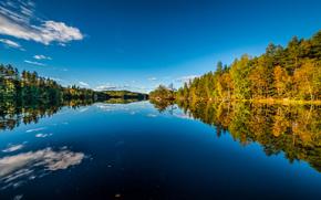 Sætre, Hurum, Buskerud, Norway, Хурум, Бускеруд, Норвегия, осень, озеро, лес, отражение