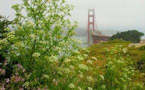 Estado da Calif?rnia, Fort Scott, A Golden Gate Bridge