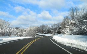 ?rvores, paisagem, estrada, inverno