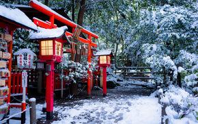 Quioto, Jap?o, Torii port?o, Temple Nonomiya, Nonomiya Shrine, Torii, templo, port?es, luzes, inverno, neve