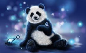 panda, farfalla, arte