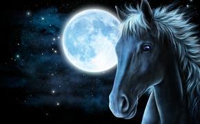 art, horse, moon
