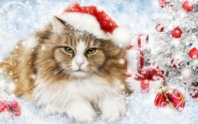 New Year, fir-tree, cat