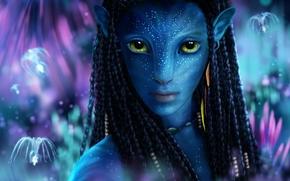 Avatar, NaVi Amanda, Fantasie