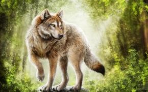 loup, prédateur, art