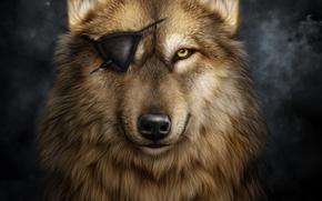 loup, sans yeux, art