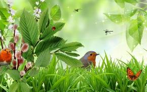 трава, ветки, птицы, бабочки, art