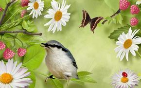 pájaro, mariposa, Flores