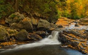 Pensilv?nia, Parque Estadual Ogayopayl, Ohiopyle State Park, Meadow Run Waterslides, cachoeira, cascata, pedras, floresta, outono