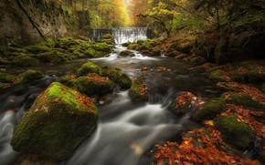 Su??a, Gorge Aroyze, Val-de-Travers, Areuse Gorge, cachoeira, cascata, rio, pedras, folhagem, musgo, floresta, outono