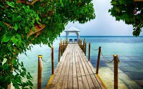 ponte, ?rvores, PEARCE, paisagem, mar