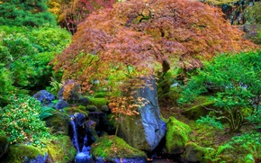 japanese garden, Японский сад, водопад, камни, деревья, пруд, парк