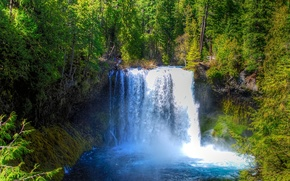 cachoeira, paisagem, ?rvores, floresta