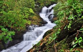 лес, деревья, скалы, речка, водопад, природа