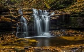 Pensilv?nia, cachoeira, cascata, Ricketts Glen State Park, folhagem, outono