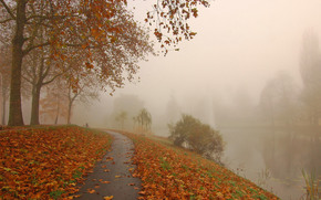 park, channel, road, trees, autumn, fog, landscape