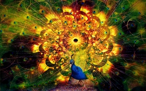 фотокартина, печать на холсте на заказ Украина ArtHolst абстракция, павлин, art