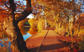 парк, пруд, деревья, дорога, осень, пейзаж