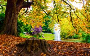 фонтан, парк, пруд, деревья, осень, пейзаж